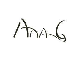 ana g consulting logo web