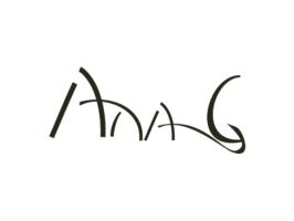 ana g consulting logo web