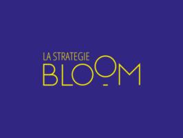 stratégie_bloom_logo_couleur_600x450
